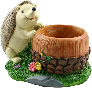 Amgker Looking Up to The Sky Small Animal Hedgehog Pine Nuts Cartoon Animal Succulent Potted Microscopic Plant Creative Flower Pot Home Office Decorative Flower Container