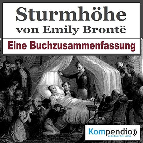 Sturmhöhe: Eine Buchzusammenfassung cover art