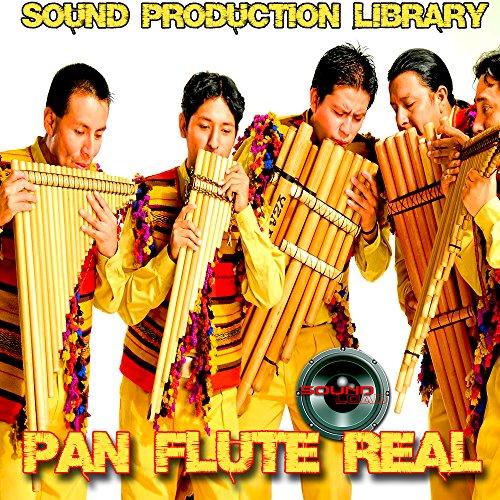Check Out This Pan Flute Real - Large unique original 24bit WAVE/Kontakt Samples/Loops Studio Librar...