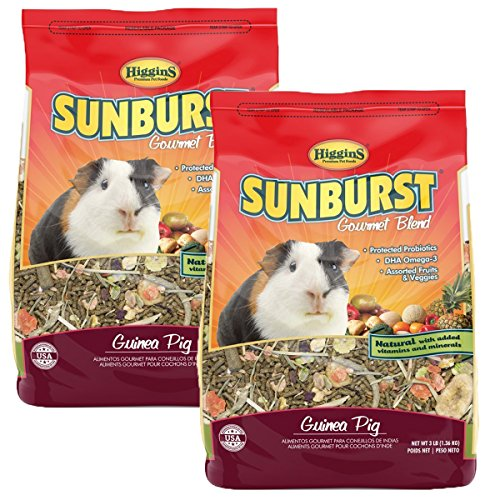 Higgins Sunburst Gourmet Food Mix for Guinea Pigs, 6 Pound
