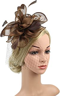 Fascinators Feather Mesh Banquet Hat Headband Women Party Hair Accessory Flower Wedding Headdress Cocktail Hat with Hair Clip And Hairband,Brown