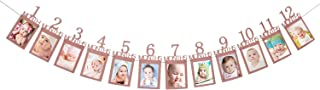 12 Month Photo Banner for First Birthday,Rose Gold Monthly Milestone Photo Banner, 1st Birthday Banner for Newborn to 12 Months Growth Record