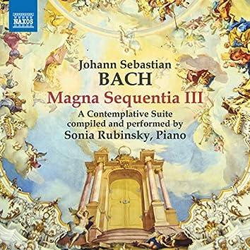 Magna Sequentia III