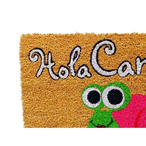 Koko DOORMATS felpudos Entrada casa Originales, Fibra de Coco y PVC, Felpudo Exterior Hola CARACOLA, 40x60x1.5 cm   Alfombra Entrada casa Exterior   Felpudos Divertidos para Puerta