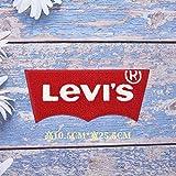 iron on patch,parches para ropa,Aplique de bordado, utilizado para decorar ropa para reparar agujeros en la ropa, borde rojo grande, letras blancas 1p