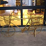 RJLI Pérgolas Bicicleta de Hierro Forjado de época Decorado Marco de Flores cesto de Flores balcón Colgador de Flores Colgante Colgante de múltiples Capas (Color : Brass)
