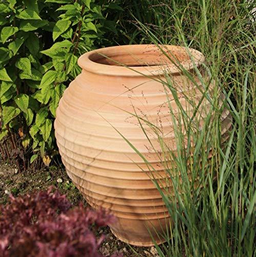 Kreta-Keramik | mediterrane Terracotta Amphore | 60 cm | frostfest | bauchiges Pflanzgefäß für Innen und Außen, Garten Terrasse Deko, Ficus