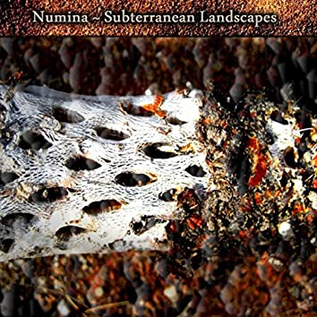 Subterranean Landscapes