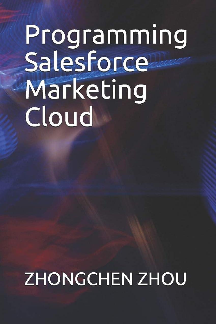 銀河エンティティ朝ごはんProgramming Salesforce Marketing Cloud