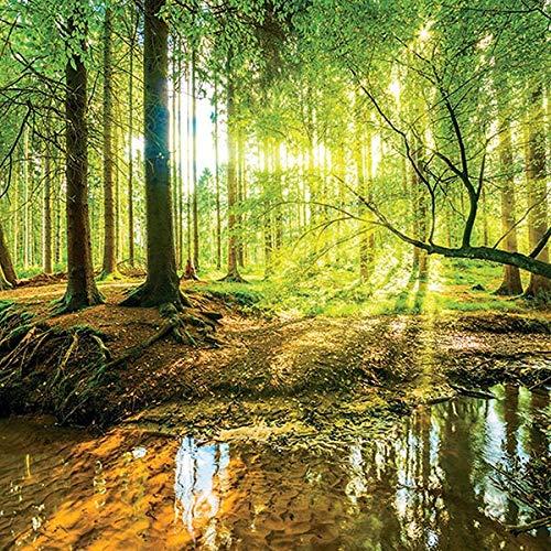 Carta da parati fotografica in tessuto non tessuto, decorazione da parete, foresta, natura, albero paesaggio moderna decorazione da parete, Tessuto non tessuto, 10513, 254cm x 184cm
