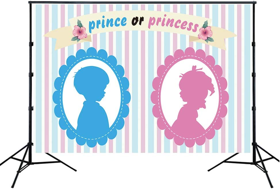 HUAYI 7x5ft Prince or Princess Gender Reveal Party Backdrop boy or Girl Baby Shower Pink or Blue Striped Gender Reveal Photo Shoot Booth Background Vinyl Party Banner for Cake Table Supplies w-2112