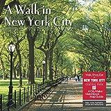 A Walk in New York City 2020 Wall Calendar