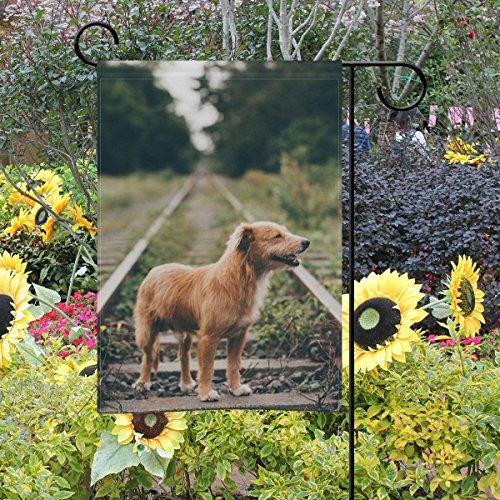 Jere Adorable Puppy Garden Drapeau Décoratifs Double Face Polyester 30,5 x 45,7 cm pour Votre Jardin, Polyester, Multicolore, 28x40(in)