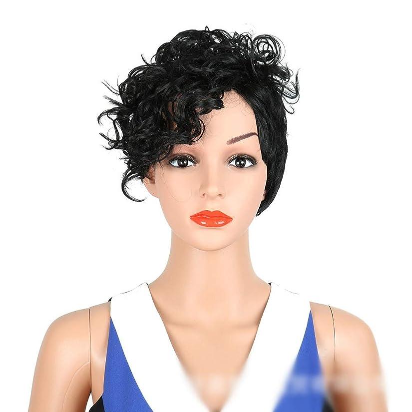 封建幸運な聞くYrattary 短い巻き毛のかつらアフリカブラックスモールロールサイドパートウィッグ爆発ヘッドカーリーヘアウィッグ女性のかつら (Color : ブラック)