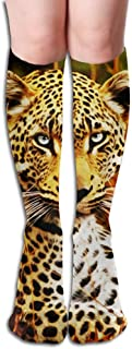 Tube High Tiger Keen Sock Boots Compression Long Stockings For Athletics,Travel Socks