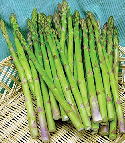 graines d'asperges réelles inférieures Pressur de sang, les graines de légumes et de fruits, plantes chers Semences pour la maison et le jardin 10 pcs / sac