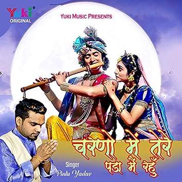 Charno Mein Tere Pada Main Rahun (Hindi)