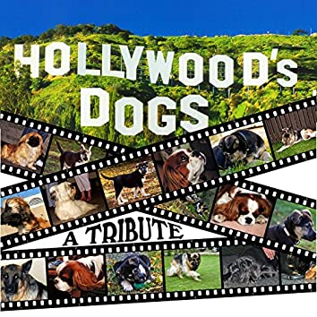 Hollywood's Dogs