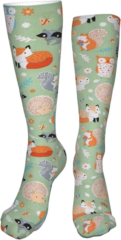 Raccoon Women Premium High Socks, Stocking High Leg Warmer Sockings Crew Sock For Daily And Work