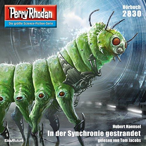 In der Synchronie gestrandet Titelbild