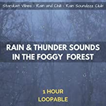 Best rain and thunder in the woods Reviews