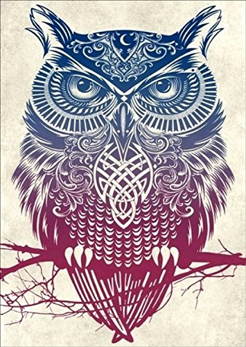 DIY 5D Diamond Painting by Number Kit, Colorful Owl Crystal Diamond Embroidery Cross Stitch Arts Craft Canvas for Wall Decor