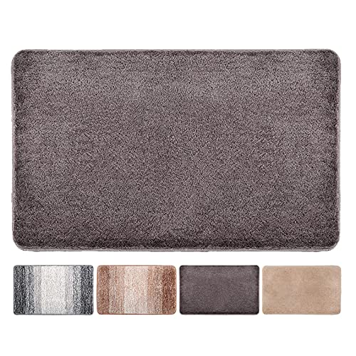 Indoor Doormat Front Door Mat Non Slip Rubber Backing Absorbent Mud and Snow Magic Inside Dirts Trapper Mats Entrance Rug Machine Washable (20 x31.5 , Coffee)