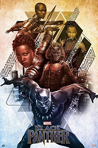 Black Panther - Marvel Movie Poster/Print (Character Collage) (Size: 24 inches x 36 inches)