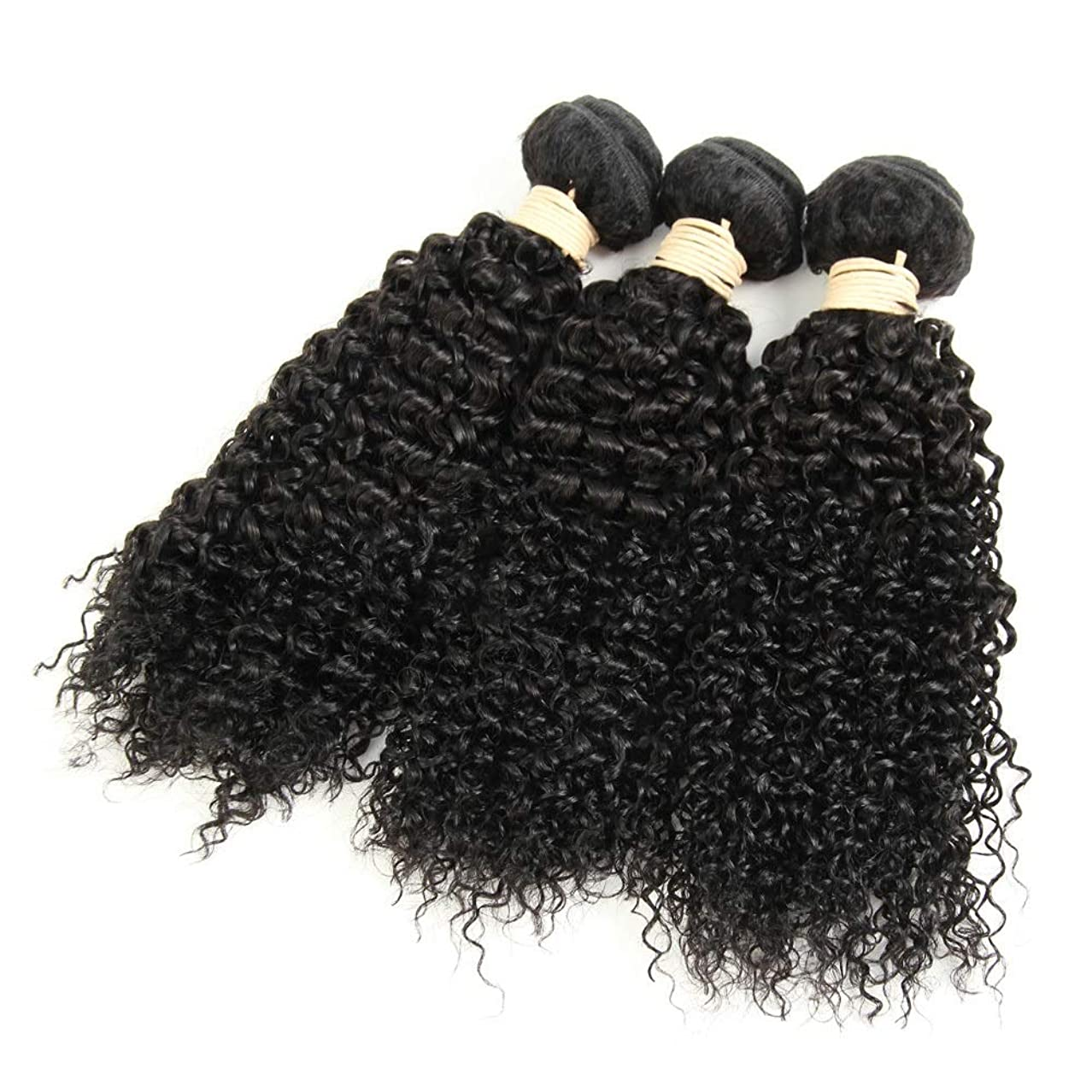 メロン午後数学YESONEEP 1バンドル変態巻き毛100%本物の人間の髪の毛の束ブラジルのディープウェーブの毛未処理の髪を編む(8