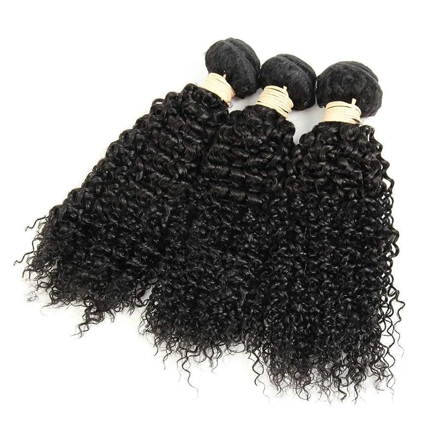 フォアタイプマナー保証BOBIDYEE 1バンドル変態巻き毛100%本物の人間の髪の毛の束ブラジルのディープウェーブの毛未処理の髪を編む(8