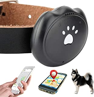 Jason Zeng GPS Pet Tracker & Activity Monitor Intelligent 5-Level Positioning System, No Subscription Fee IP67 Depth Waterproof Pets & Rare Animal Searcher Locator Trajectory Tracking Alarm