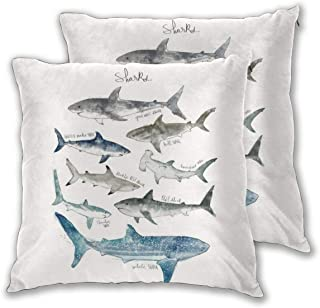 Amazon.es: Shark and Co.