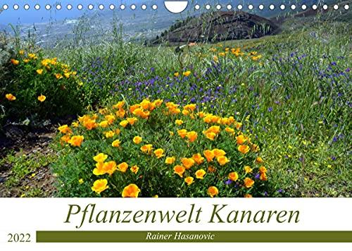 Pflanzenwelt Kanaren (Wandkalender 2022 DIN A4 quer)