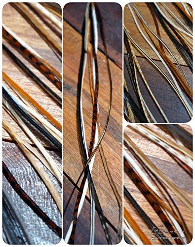 Lot de 6 plumes extensions Long Tons naturels