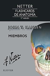 Netter. Flashcards de anatomía. Miembros - 4ª edición