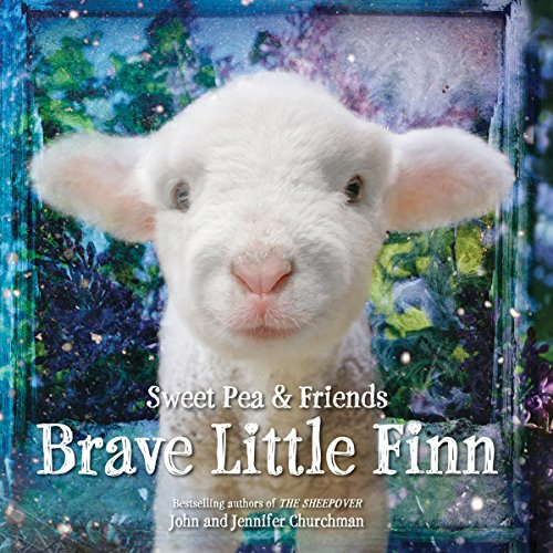 Brave Little Finn audiobook cover art