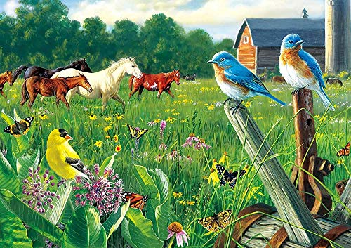 GHYU Rompecabezas 1000 Piezas para niños - Pájaros y Caballos - Juguetes de Entretenimiento de Madera Rompecabezas Tamaño del Producto Terminado: 75 * 50 cm
