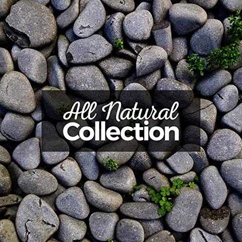 Nature Sound Collection