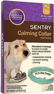 Best good dog dog collar Reviews