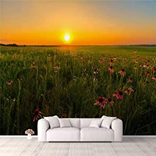 Modern 3D PVC Design Removable Wallpaper for Bedroom Living Room Sunset in a Prairie Field of Purple Coneflowers Wallpaper...