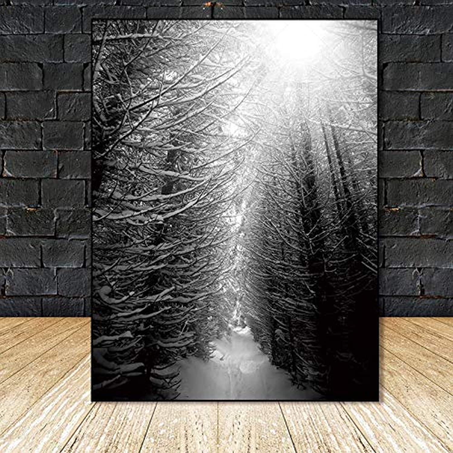 W15Y8 Nordic Poster Canvas Painting Home Decor Art Prints Tall Trees Forest Natural Wall Pictures Living Room Art Decoration Picture40Cmx50Cmx3Pc No Frame
