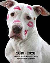 2019 - 2020 | 18 Month Weekly & Monthly Planner July 2019 to December 2020: White Pit bull Dog with Lipstick on His Face Pets Vol 43 Monthly Calendar ... Holidays– Calendar in Review/Notes 8 x 10 in.