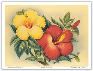 Hawaiian Hibiscus - Hawai'i State Flower - Vintage Hawaiian Airbrush Art by Eve c.1940s - Hawaiian Master Art Print - 9in x 12in