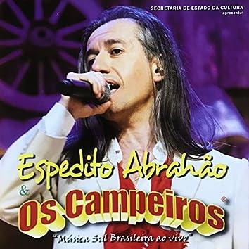 Música Sul Brasileira Ao Vivo