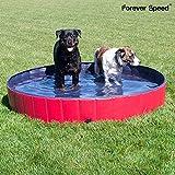 Forever Speed Piscina Perros,Gatos Bañera,Piscina Mascotas,Piscina para Niños Portátil Plegable Piscina de Baño Antideslizante,Resistente al Desgaste,PVC Doggy Pool (Rojo)