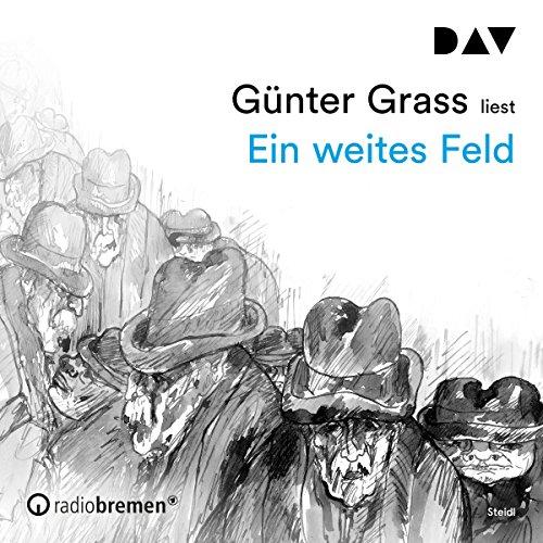 Ein weites Feld audiobook cover art