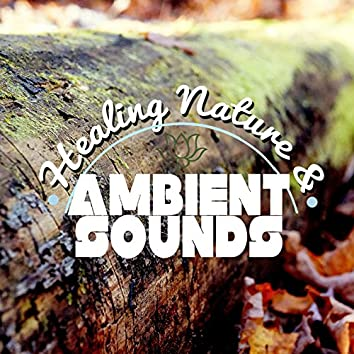 Healing Nature & Ambient Sounds
