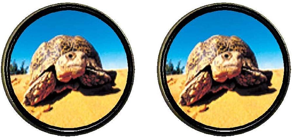 GiftJewelryShop Bronze Retro Style Desert Turtle Photo Clip On Earrings 14mm Diameter