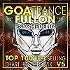 H-Sunrise - Immersium ( Goa Trance Fullon Psychedelic )
