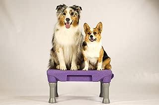 dog training pedestal